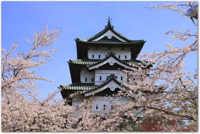 晴れた春の日の弘前城と満開の桜