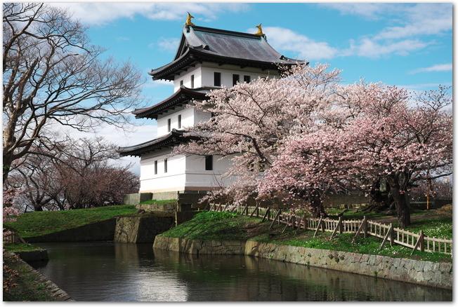 満開の桜と濠の向こうに見える松前城の様子